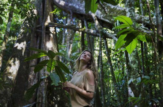 A moda e sua relação com a Amazônia