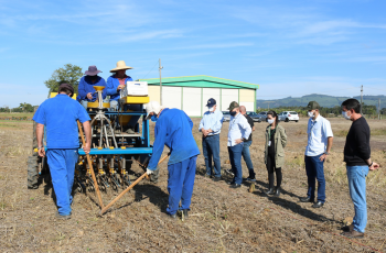Cooperja é parceira do Programa de incentivo ao plantio de culturas de inverno
