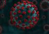 Coronavírus em SC: Estado confirma 1.168.139 casos, 1.143.721 recuperados e 19.033 mortes