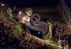 Veículo capota em rodovia estadual e tira vida de passageiro no interior de Meleiro