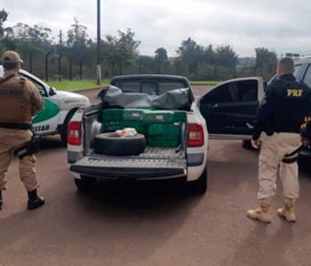PRF e PMSC prendem dois traficantes com mais de 200 quilos de maconha