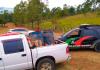 Dois homens são presos em abate clandestino de cavalos no sul de SC