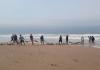 10 toneladas de corvinas são pescadas no Arroio