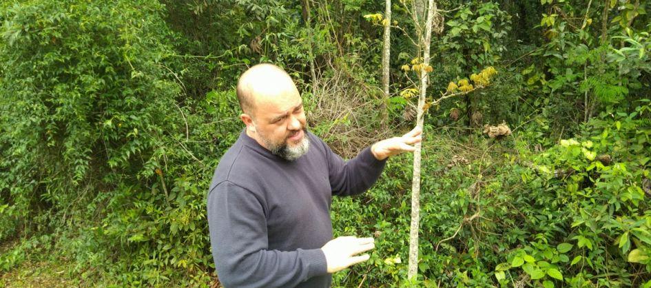 Fragmentos florestais de mata nativa integram espaços de e...