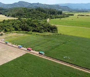 Dia de campo destaca manejo da soja em parceria com a Cooperja