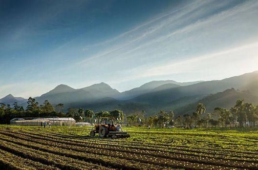 Santa Catarina investirá R$ 57 milhões em novos projetos de apoio à agricultura e pesca