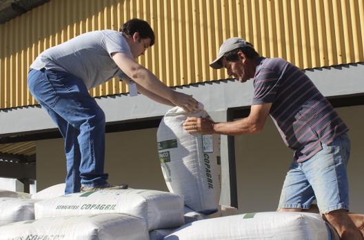 Agricultores de Criciúma começam a receber sementes com 40% de desconto
